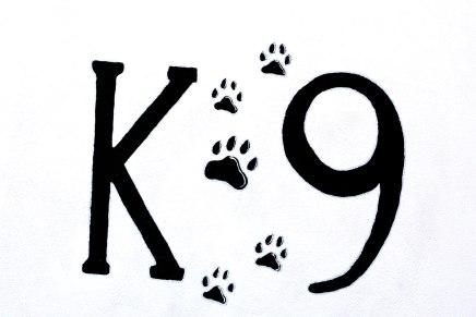 Bandaríkjamenn kalla löggu- og aðstoðarhunda oft K 9. Þessi merking á vegg hefur því meiningu þarna.