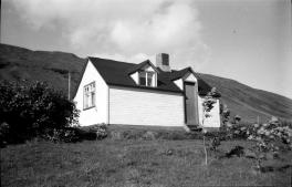 Snerra sáluga 1955. Mynd: Þórir Jónsson frá Jarðbrú.
