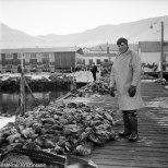 Ástralíumaðurinn sjálfur, Ásgeir Þorsteinsson, við grásleppuhaug á syðri bryggju í apríl 1970.